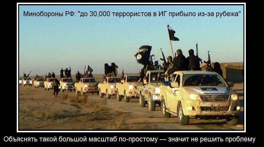 Замминистра обороны РФ назвал численность иностранцев в рядах ИГИЛ