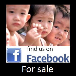 20130913 Find us on Facebook for sale