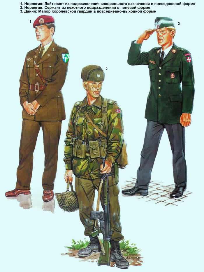 Военнослужащие армий Норвегии и Дании