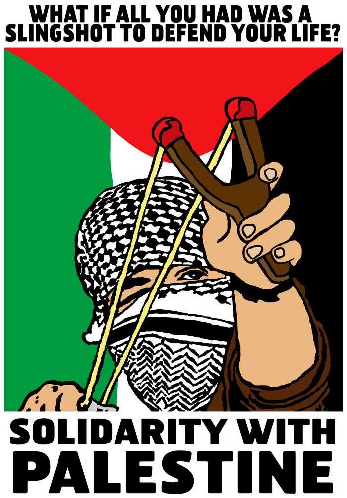 Что делать, если все, что вы имеете для защиты своей жизни  - это рогатки? Солидарность с Палестиной (США)