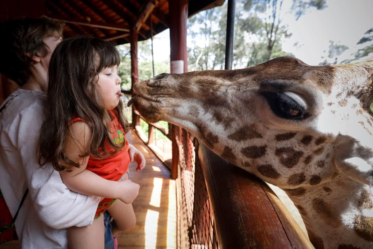 Давай поцелуемся что ли: В кенийском зоопарке