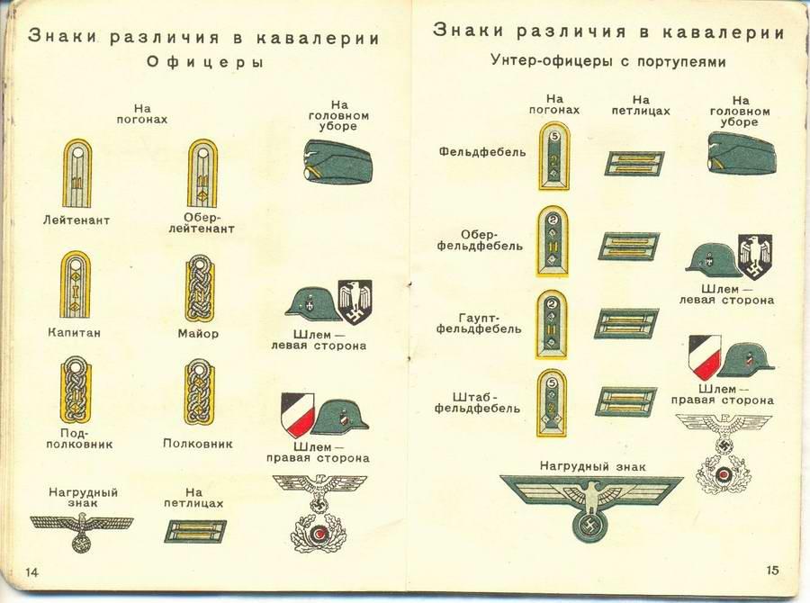 Знаки различия в кавалерии - офицеры и унтер-офицеры