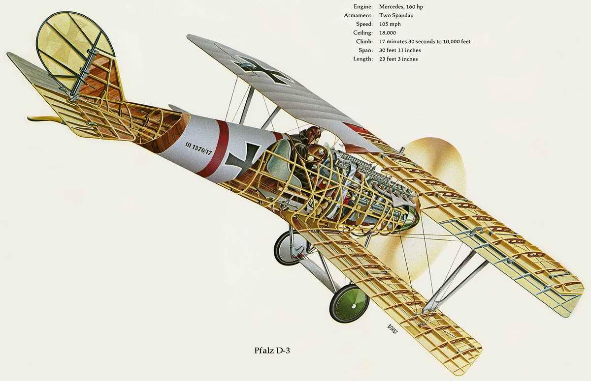 Pfalz D.III - истребитель-биплан Пфальц D-3, 1917 год (Германия)