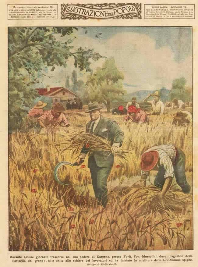 Муссолини принимает участие в уборке урожая (1939 год)