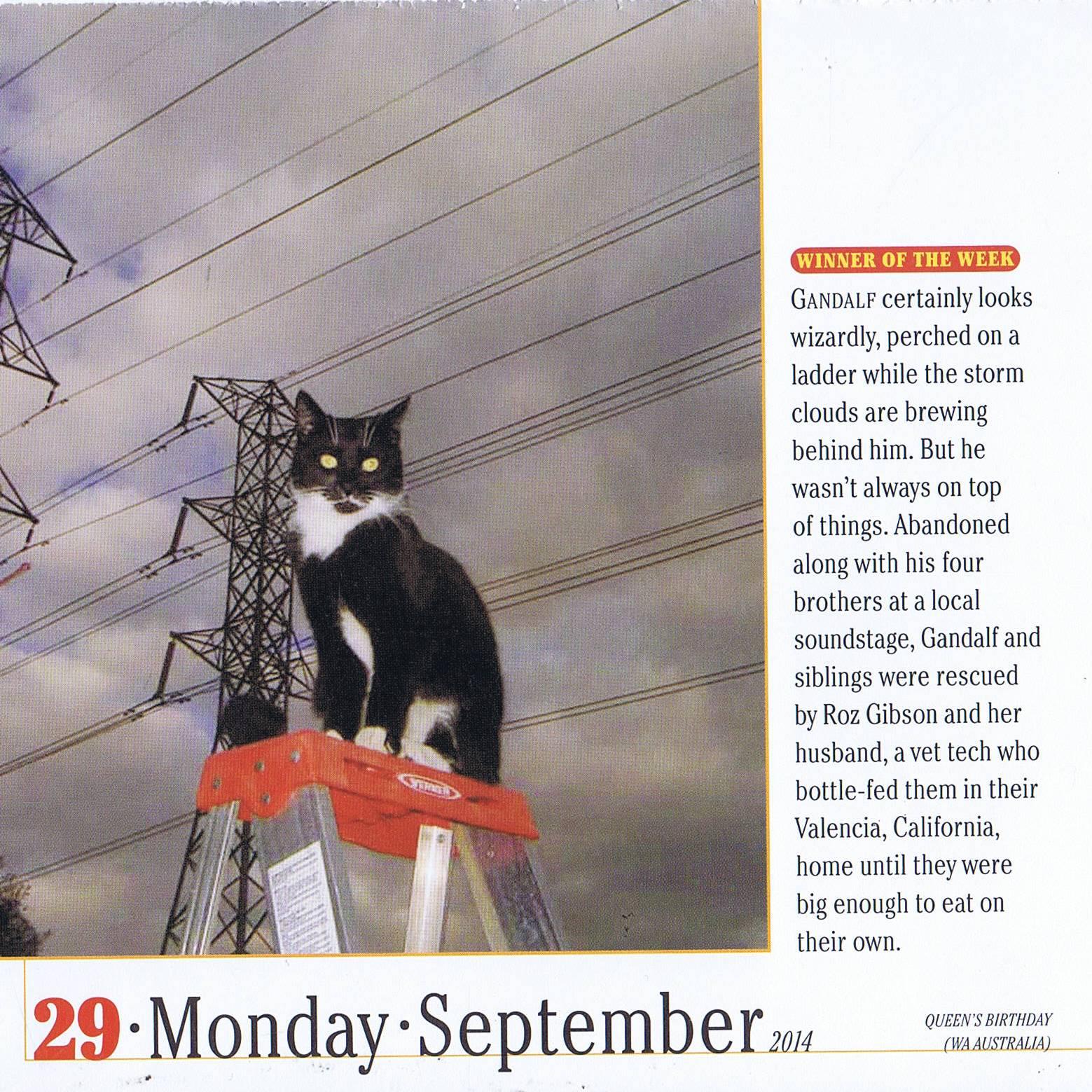 September29Gandalf