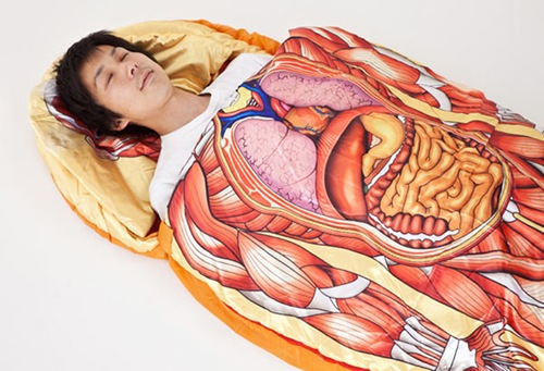 Anatomical-Model-Sleeping-Bag