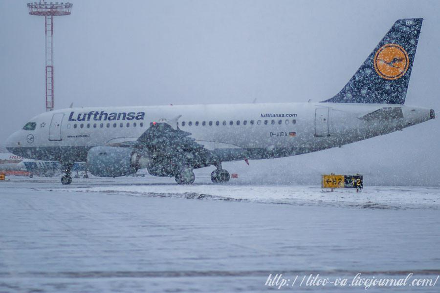 02. Airbus A319  компании Lufthansa. Недавно приземлился. Пошел снег и фотографировать стало трудно!