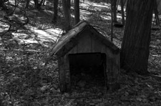 Abandoned DOG house!