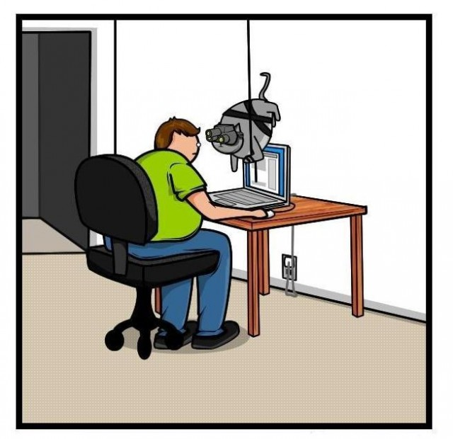Картинки программиста приколы, картинки девушке надписями