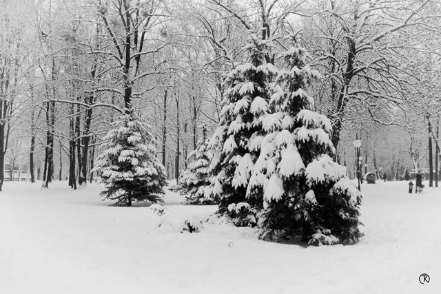 In winters silence