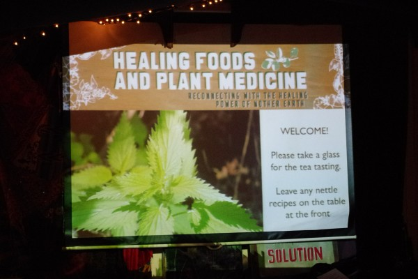 Healing Food and Plant Medicine 1