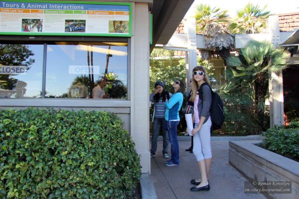 Зоопарк Сан-Диего, касса