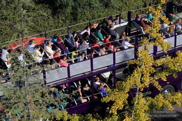 Зоопарк Сан-Диего, автобусная экскурсия
