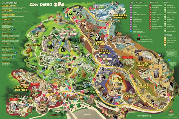 Зоопарк Сан-Диего, карта парка