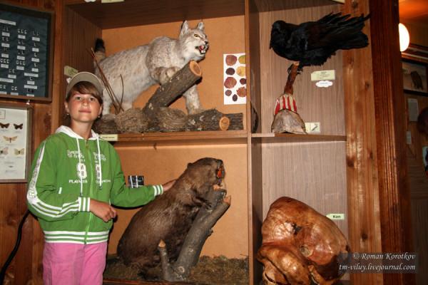 Таганай: зоологический музей