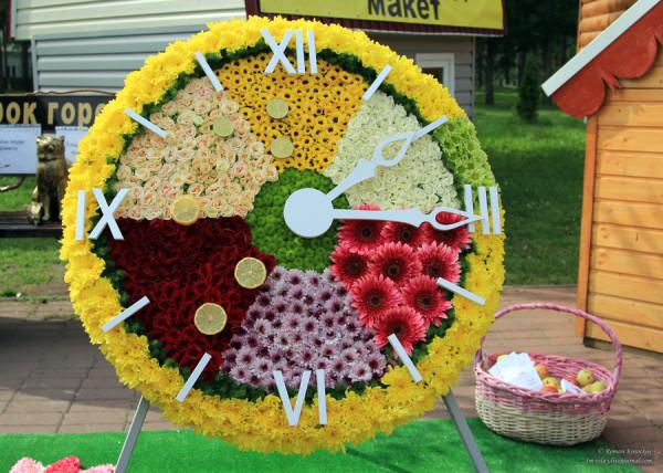 выставка_плодов_цветов2