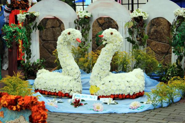 выставка_плодов_цветов19