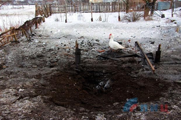 Собака спасла жизни жителям Калиново во время обстрела со стороны ВСУ