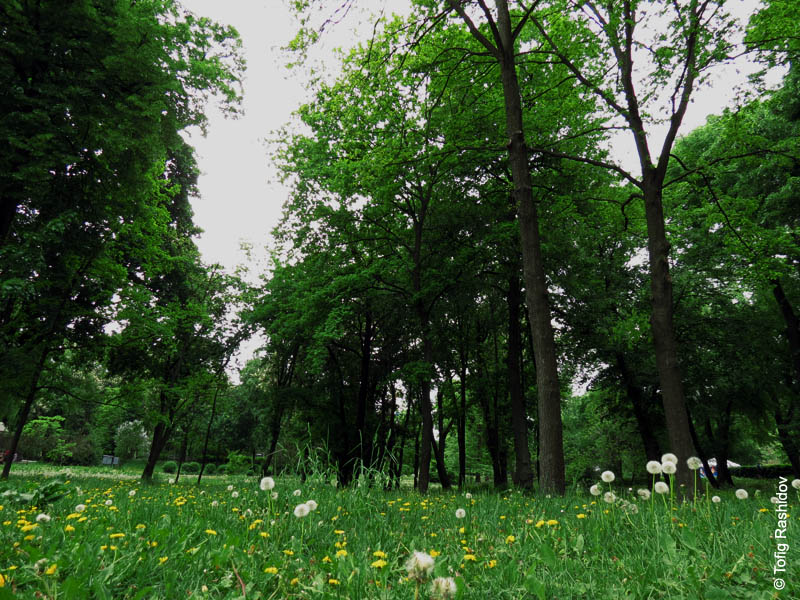 kyiv_zoo_19