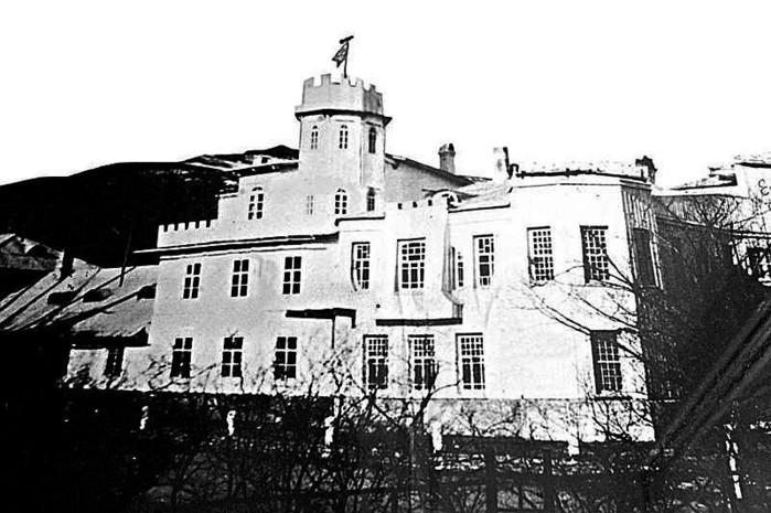 Дом-замок Янковского