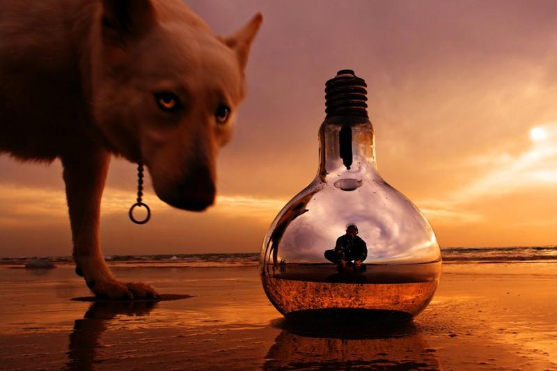 Magic_Lamp_by_ahermin