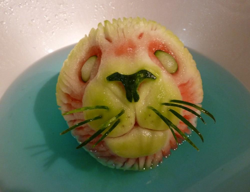 seal-pup-watermelon