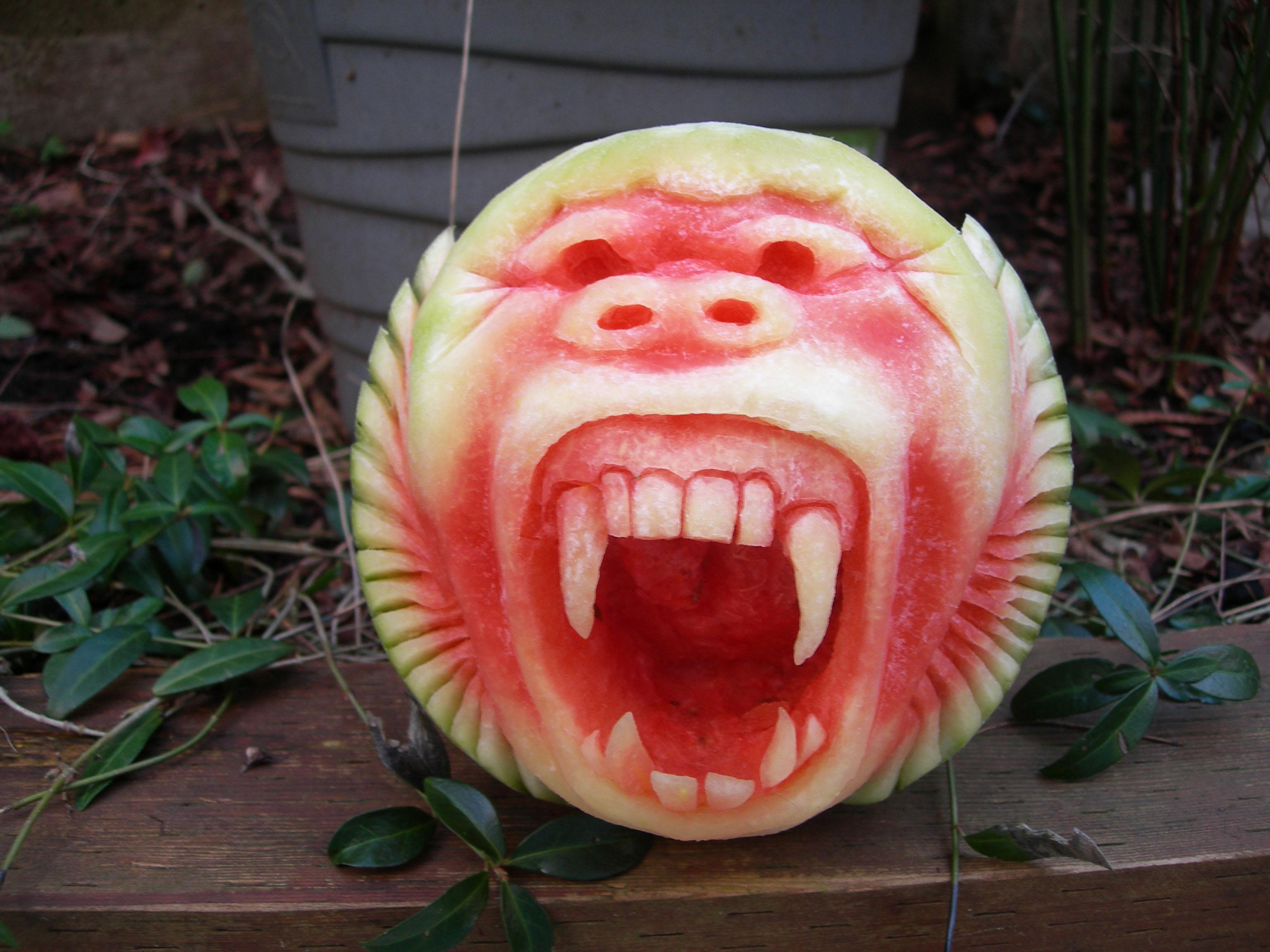 baboon-watermelon-1