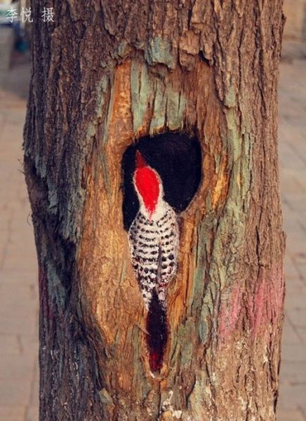 tree_holes_art_10