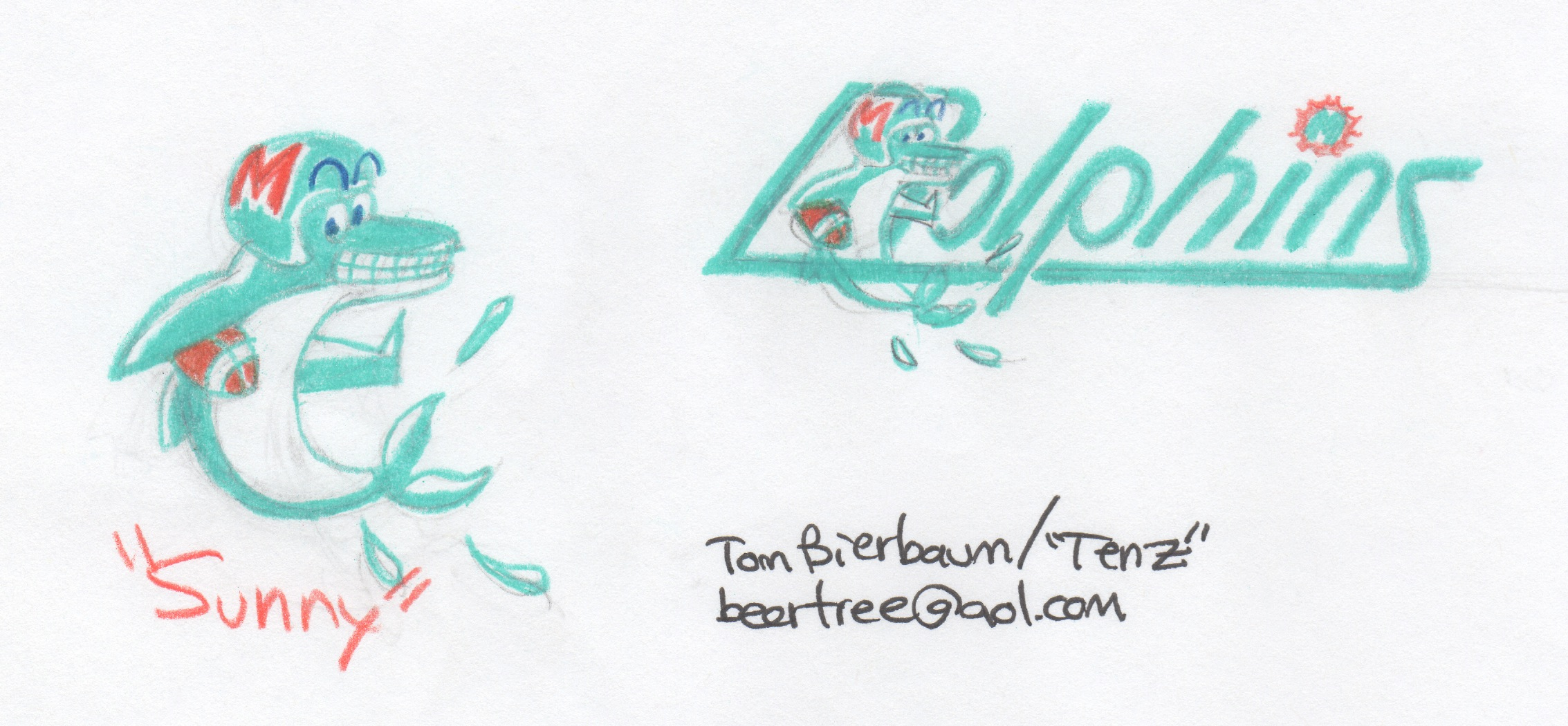 tom bierbaum dolphins logo