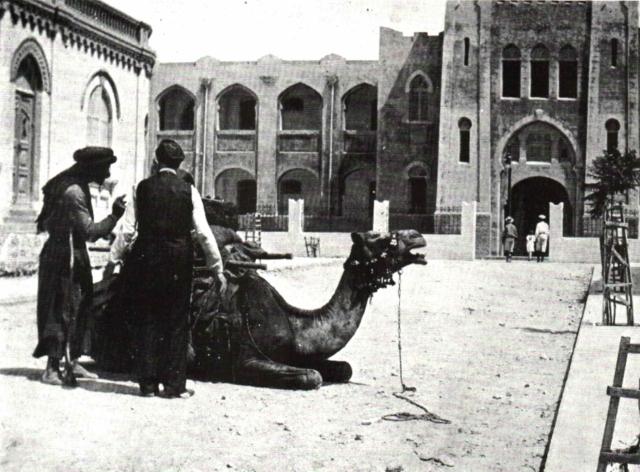 Гимназия Герцелия, 1917 год