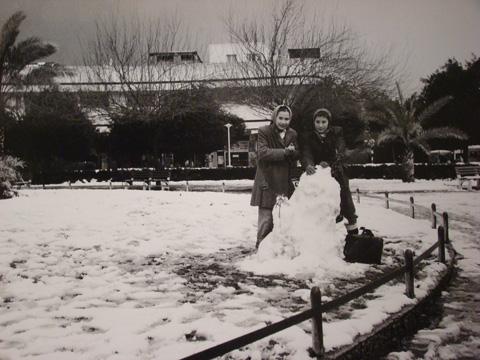 Площадь Дизенгоф, 5 февраля 1950 года