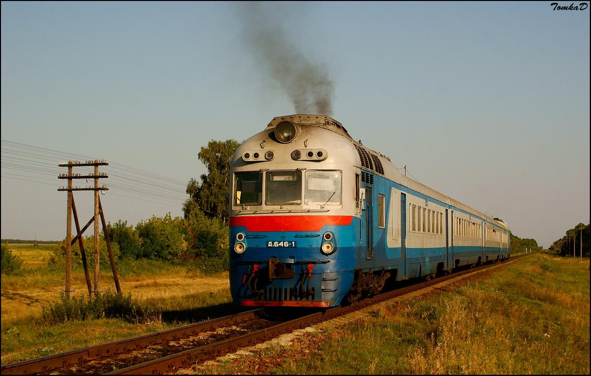 DSC03563-02