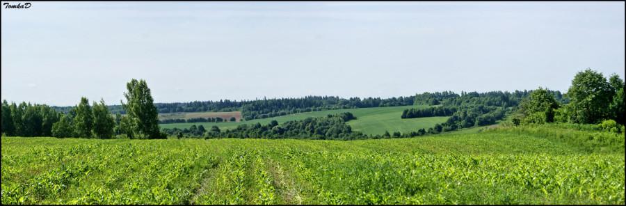 DSC07463 Panorama
