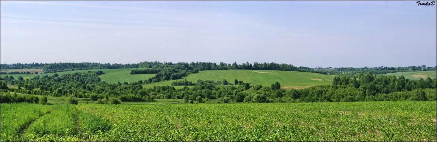 DSC07467 Panorama1600