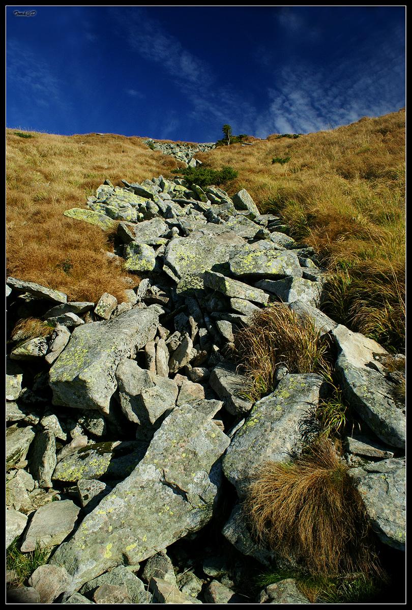 Каменные реки карпат