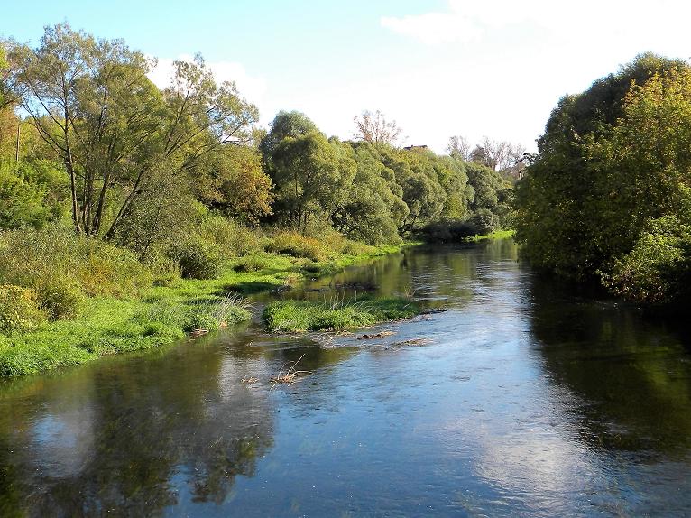 река Протва.png