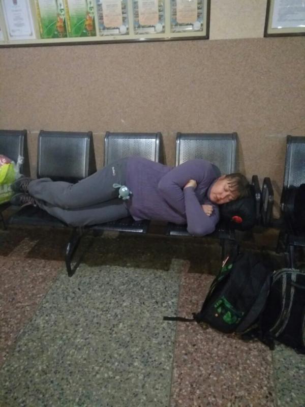 Машка спит.jpg