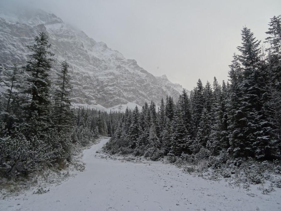 Снежная дорога на фоне гор