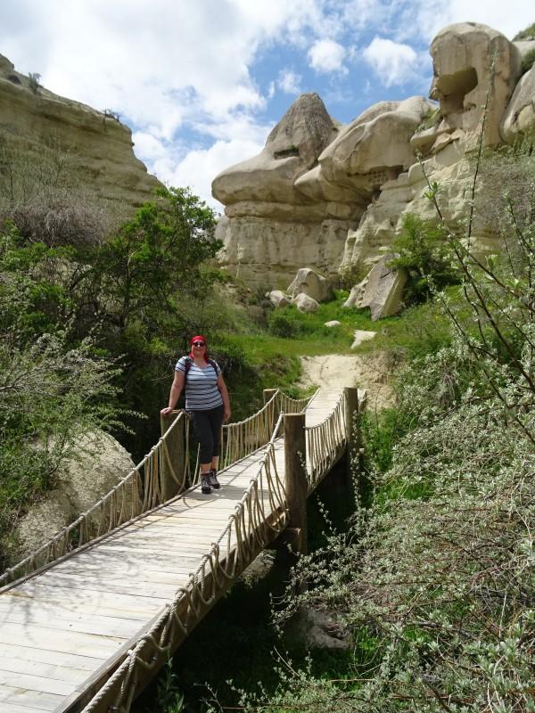 Мост и рептилоид.JPG