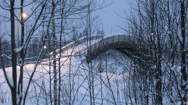 Мостик на беговой лыжной трассе