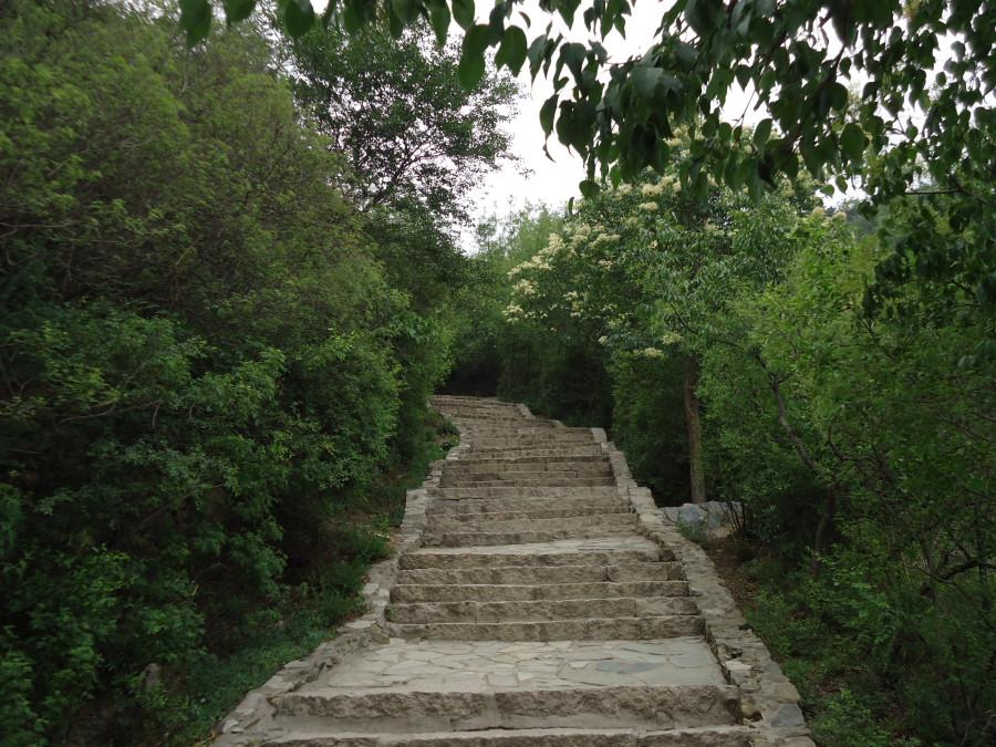 Живописная лестница