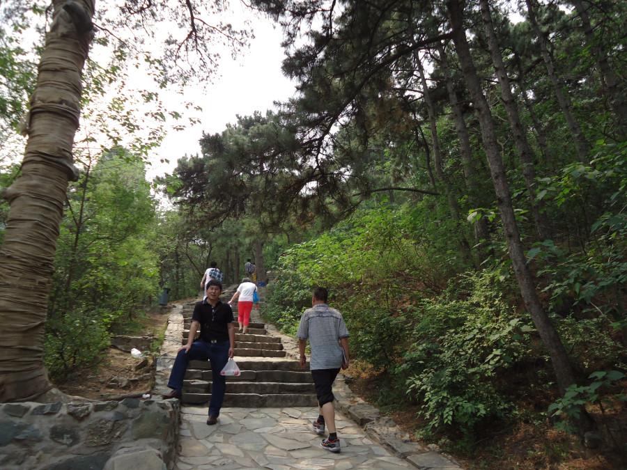 Дорога плавно превращается в лестницу