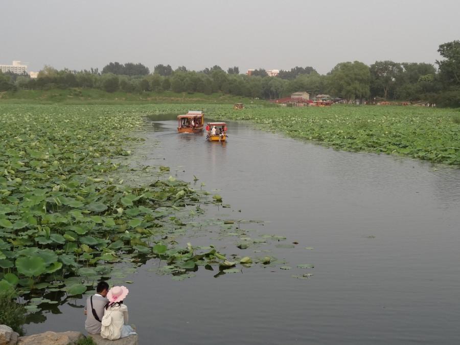 Канал и лодки