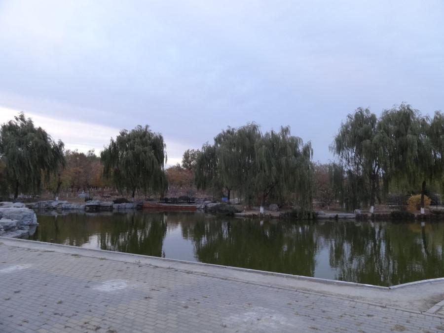 Обычный парк вечером