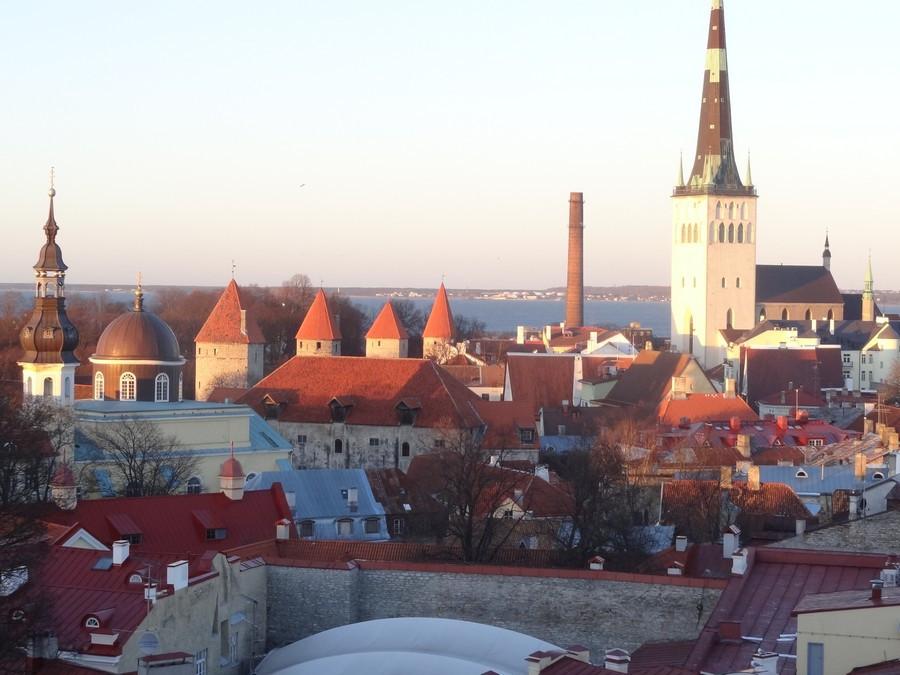 Крыши Таллина