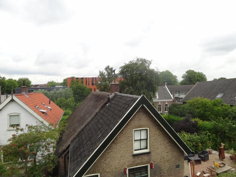 Крыша зажиточного дома