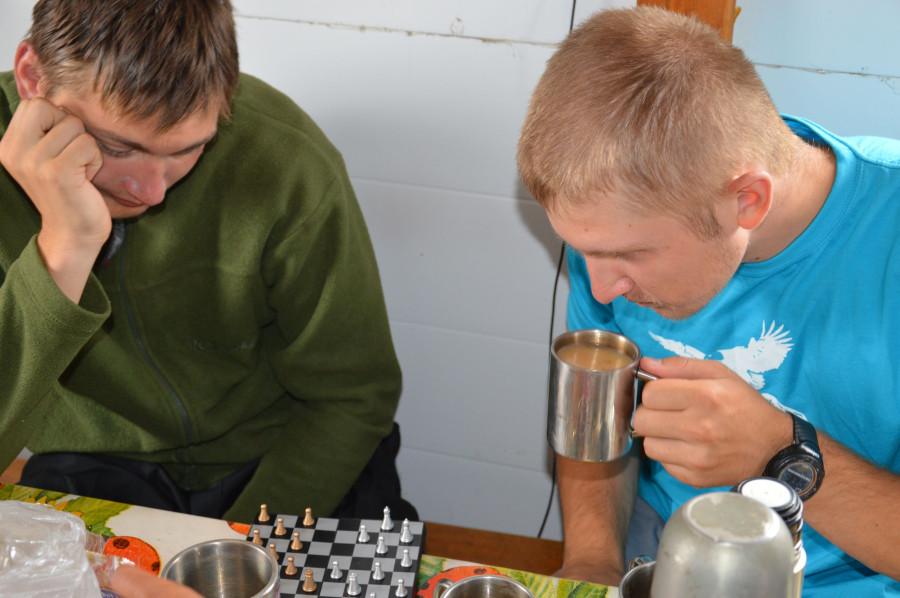 Шашки шахматами