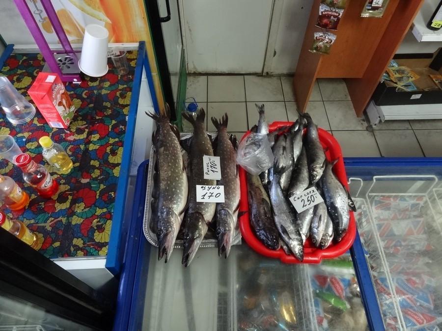 Вознесение. Рыба в магазине.