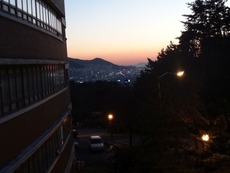 Вид из кампуса 1.