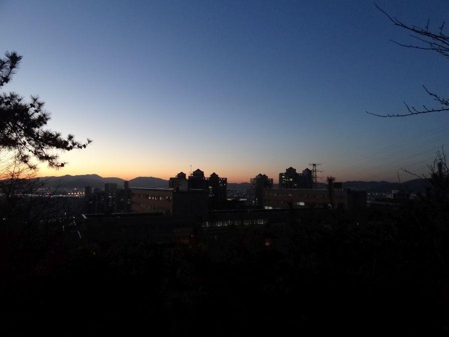 Вид на вечерний город из кампуса
